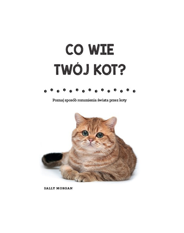 Co wie twój kot